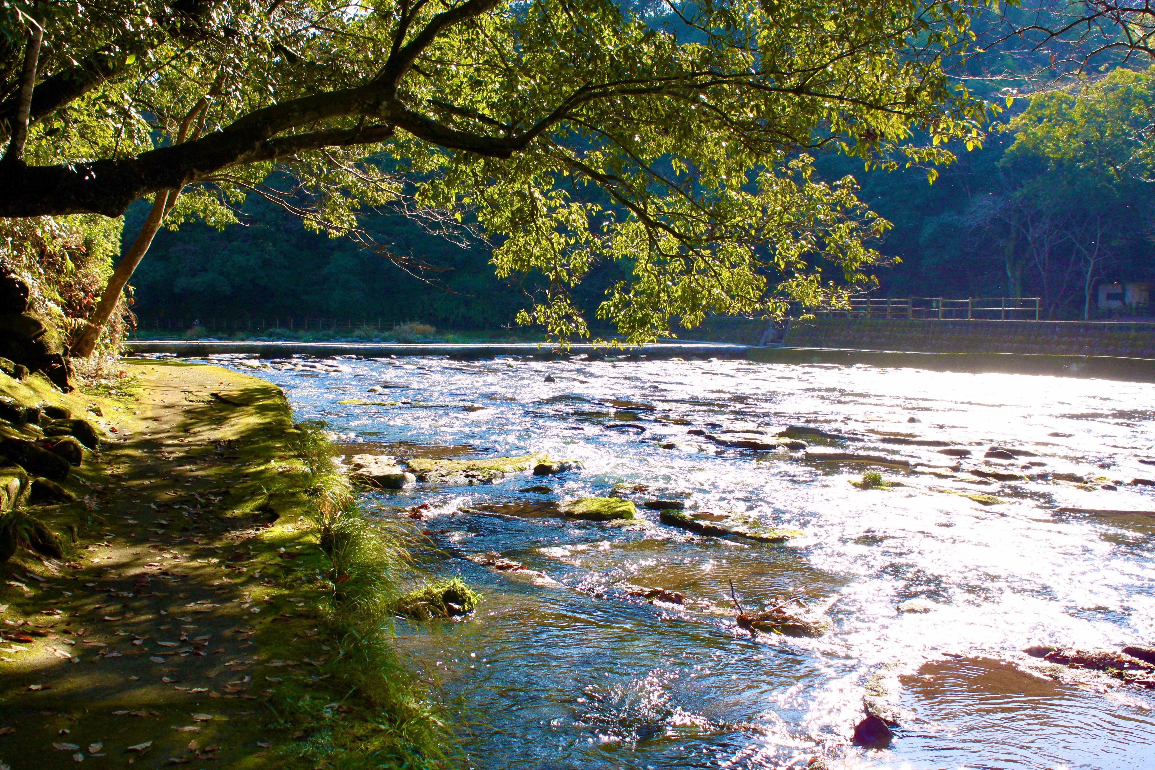 イメージ:流れる川の写真